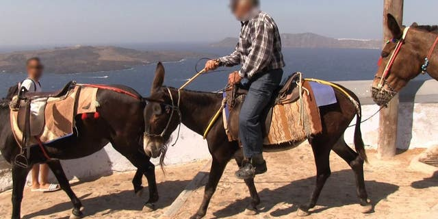 """""""Santorini holds itself apart from Greece and Greek law — it's a totally uncivilized place where men openly whip and beat donkeys and mules, making them perform backbreaking work, day in and day out,"""" PETA President Ingrid Newkirk said in a statement."""
