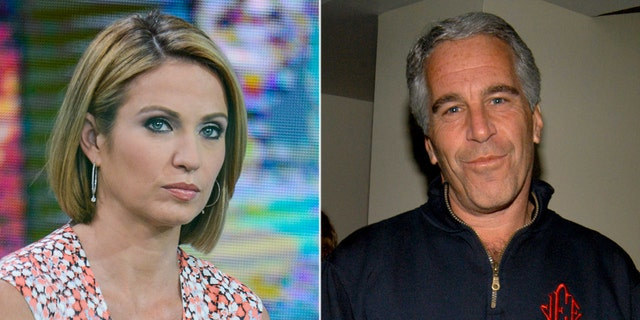 ABC News anchor Amy Robach admitted on hot mic footage published by the controversial Project Veritas that she had the Jeffrey Epstein story three years ago.