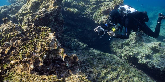 A diver explores one of the ancient wrecks. (photo by C. Hoye)
