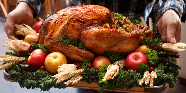Westlake Legal Group TurkeyiStock-2 TSA shares Thanksgiving travel tips, confirms that turkey, stuffing can be stuffed into carry-on bags Michael Bartiromo fox-news/travel/general/travel-tips fox news fnc/travel fnc be2e8e1f-9270-5fa1-8945-b25b234d0510 article