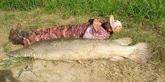 Chris Hernandez was fishing on a river on the outskirts of San Benito in his kayak when he hooked the monster.