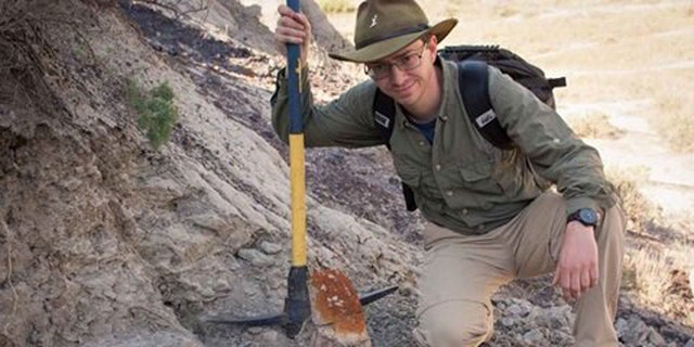 Paleontologist Scott Persons, pictured alongside the partially uncovered skull. The Styracosaurus skull has implications for how horned dinosaurs are identified. (Credit: Scott Persons)