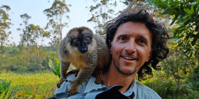 """Photographer Luca Bracali, 54, was """"really surprised"""" when the black-and-white ruffed lemur attempted to snatch the camera from his grip. (Credit: SWNS)"""