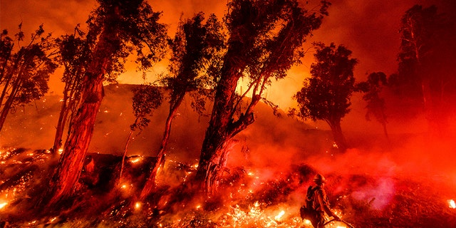 Flames consume a hillside as firefighters battle the Maria Fire in Santa Paula, Calif., on Friday.