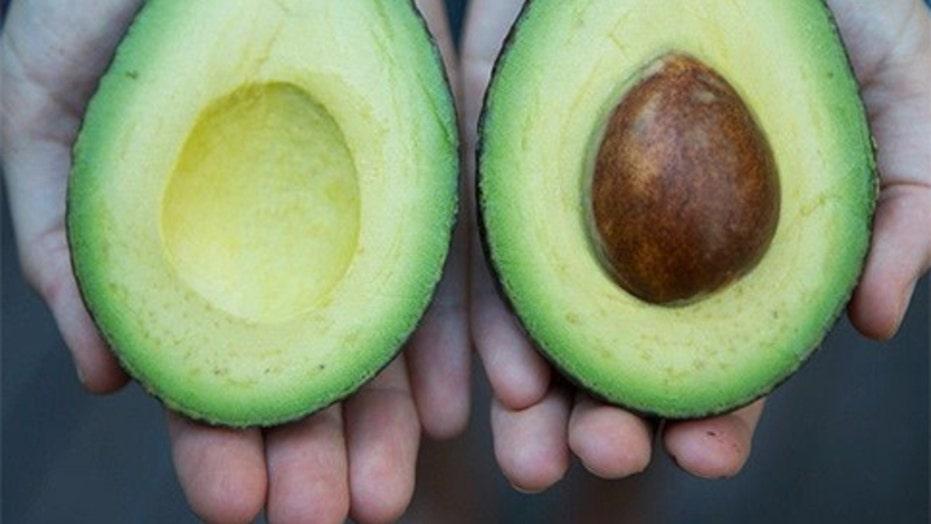 Hawaiian farmer grows heaviest avocado
