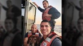 Coast Guard rescues Florida dog spotted swimming for its life