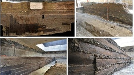 Ancient Rome 'built on timber imported from more than 1,000 miles away,' study finds