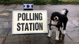 UK election voters bring dogs to polling stations