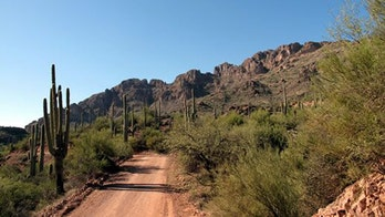 Search for missing Arizona girl, 6, becomes recovery effort