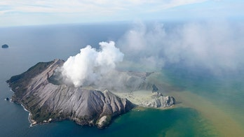 New Zealand orders 1,290 square feet of skin for volcano victims, doctor says hospital 鈥榣ike a war zone鈥�