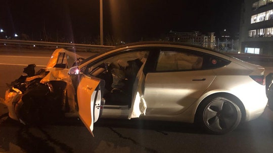 Tesla on autopilot rear-ended Connecticut cop car as driver checked on dog: police