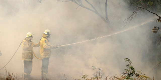 High temperatures and strong winds have been fanning bushfires around Australia, including more than 100 in New South Wales state.
