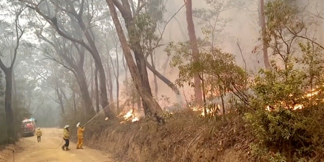 In this image made from video taken on Dec. 23, 2019, and provided Dec. 25, 2019, by Ingleside Rural Fire Brigade, fire brigade volunteers trying to tackle the fire in Kurrajong Heights, New South Wales. Australian authorities have warned that the fires in New South Wales could fester for months, causing more angst for exhausted firefighters.(Ingleside Rural Fire Brigade via AP)