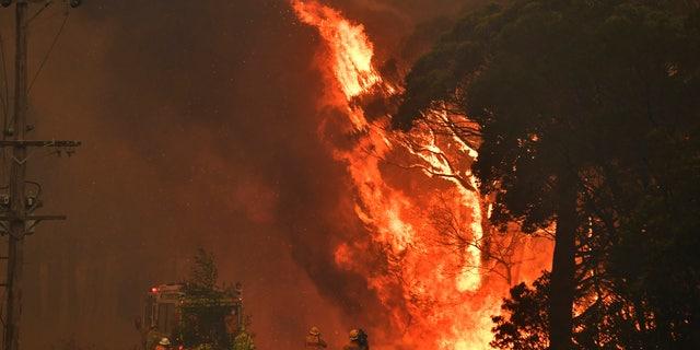Westlake Legal Group AussieHeat3 Australian PM apologizes for Hawaii vacation after two firefighters battling massive wildfires die Paulina Dedaj fox-news/world/world-regions/australia fox-news/world/disasters/fires fox news fnc/world fnc da396410-fa7a-5281-9821-b4100c4ec258 article