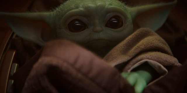 A representative for Disney confirmed the Twitter photo, featuring a Baby-Yoda-themed sign, was a hoax.