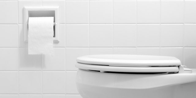 A new study reveals that flushing the toilet produces a plume that can rise almost three feet into the air. (iStock)