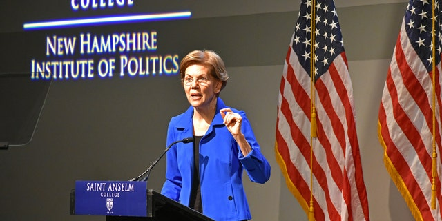 Democratic presidential candidate Sen. Elizabeth Warren of Massachusetts gives an address at the New Hampshire Institute of Politics at Saint Anselm College, on Dec. 12, 2019