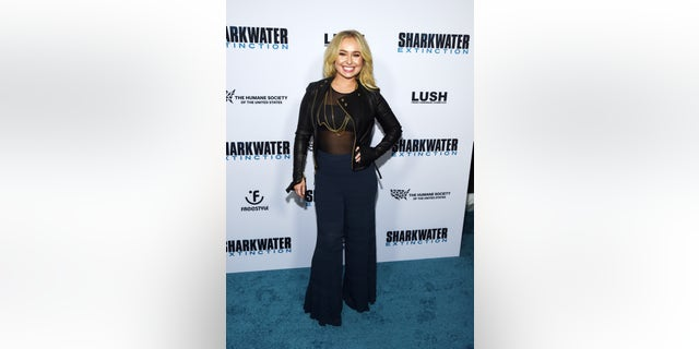 "HOLLYWOOD, CALIFORNIA - JANUARY 31: Hayden Panettiere arrives at a screening of Freestyle Releasing's ""Sharkwater Extinction"" at the ArcLight Hollywood on January 31, 2019 in Hollywood, California. (Photo by Amanda Edwards/Getty Images)"