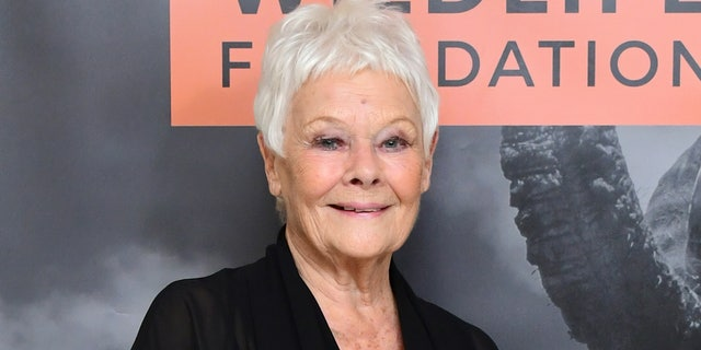 Dame Judi Dench arriving at the Wildlife Ball fundraiser at the Dorchester in London. (Photo by Ian West/PA Images via Getty Images)