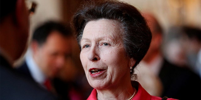 Britain's Anne, Princess Royal attends a reception to mark the centenary of the National Council for Voluntary Organisations at Windsor Castle, Britain April 2, 2019. Jonathan Brady/Pool via REUTERS - RC1FAFADF2B0