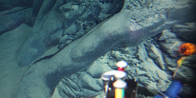 The new volcano was discovered in the Pacific Ocean off Japan. (Tohoku University)