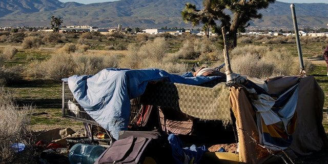 LANCASTER, CA - JANUARY 28: Derrick Chambers checks out a homeless encampment in an open area of Southern part of Lancaster while documenting their number in the area. (Photo by Irfan Khan/Los Angeles Times via Getty Images)