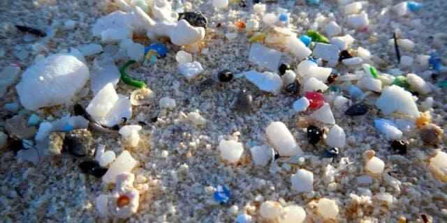Plastic rubbish on a shore. (NOAA)