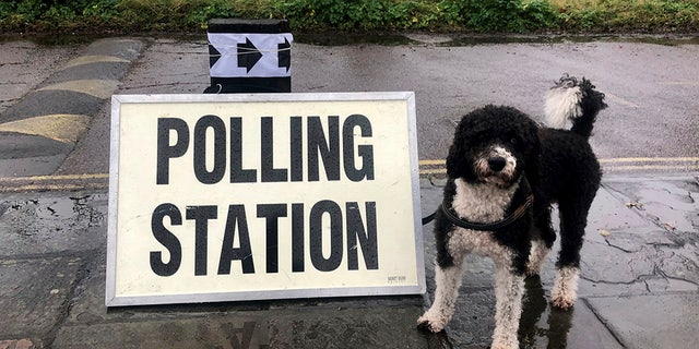 Westlake Legal Group uk-dogs-3-AP UK election voters bring dogs to polling stations Nicole Darrah fox-news/world/world-regions/united-kingdom fox-news/world/world-regions/europe/brexit fox-news/world/world-regions/europe fox-news/world/world-regions fox-news/world/uk-politics fox-news/person/boris-johnson fox-news/lifestyle/pets fox news fnc/world fnc d55d6af0-9b12-5c13-b668-1fe0d288afb4 article