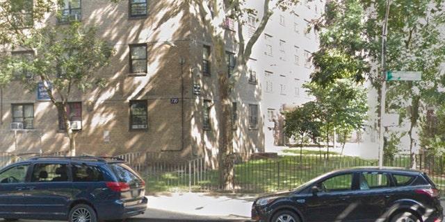 Westlake Legal Group westchester-ave-apartment Mystery gunman fatally shoots Yorkshire Terrier inside New York City apartment Greg Norman fox-news/us/us-regions/northeast/new-york fox-news/us/crime fox news fnc/us fnc article 6dfcbbaa-b558-5242-9576-f3c447a3af7b