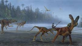 New species of meat-eating dinosaur discovered in Utah