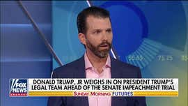 Donald Trump, Jr: If we're hearing from witnesses, I would like to hear from the other side