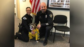 Terminally ill dog made honorary police K-9