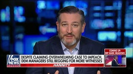Ted Cruz: Democrats should be asked what Trump did wrong that they didn't do 'tenfold worse'