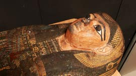 2,600-year-old Egyptian cold case closed as scientists figure out death of 'Takabuti'