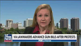 State senator on Virginia House advancing gun control bills after protest