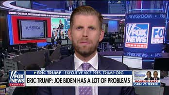 Eric Trump: Reports that Joe's brother 'leveraged' family name show 'the Bidens are a business'