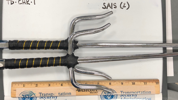TSA shares 'Top 10 Most Unusual Finds' of 2019