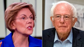 Warren opts out of defending Sanders from Hillary Clinton's 'Nobody likes him' jab: 'I'm not going there'