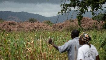 East Africa fears 'triple threat' from coronavirus, floods and locusts
