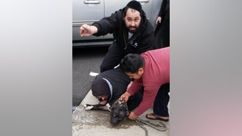 Man saves baby, girl from pit bull attack