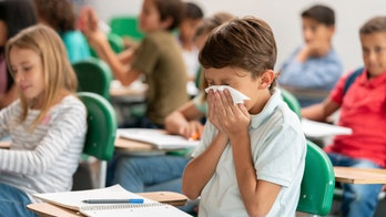 What is the adenovirus?