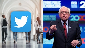 Millennial activist: Sanders targeting 'very radical ideas' to young people on Twitter