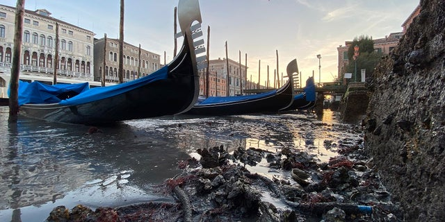 Gondolas are stranded in Venice, northern Italy, during exceptionally low tide, last week. The water peaked 45 centimeters below sea level in the afternoon making some of the Venice waterways unnavigable. (AP Photo/Luigi Costantini)