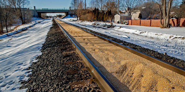 Train tracks are filled with corn spilled from a train on a Canadian Pacific line and sat two inches deep for just under a half-mile, Tuesday, Jan. 7, 2020, in Crystal, Minn.