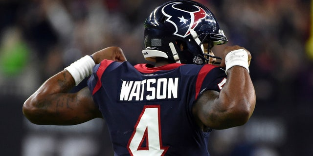 Deshaun Watson is the best hope for the Texans to win the AFC South again. (AP Photo/Eric Christian Smith)