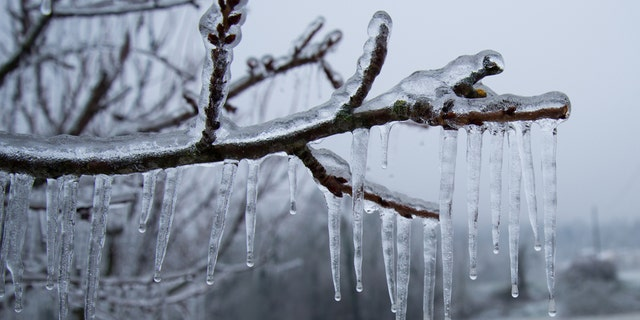 Freezing rain is when precipitation during a winter storm stays liquid and then freezes on contact when landing on a cold surface.