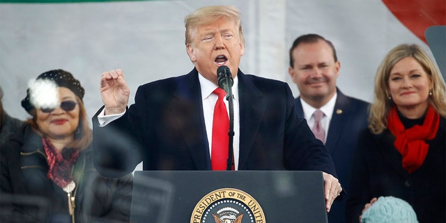 "President Donald Trump speaks at the ""March for Life"" rally, Friday, Jan. 24, 2020, on the National Mall in Washington. (AP Photo/Patrick Semansky)"