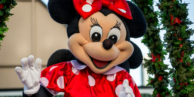 """""""Minnie"""" and the security guard brawled in front of a group of tourists and onlookers, the viral video shows."""