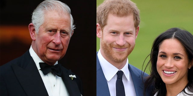 Prince Harry said in his interview with Oprah Winfrey that his father, Prince Charles, stopped taking his calls.