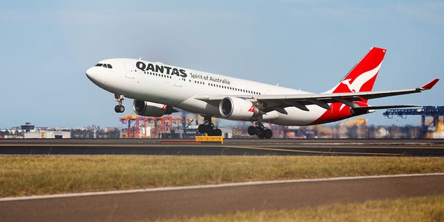 """Kay Newman launched a Change.org petition in order to urge Qantas to change its """"animal care standards and procedures to prevent any more avoidable deaths."""" The petition had nearly 70,000 signatures as of Thursday morning."""